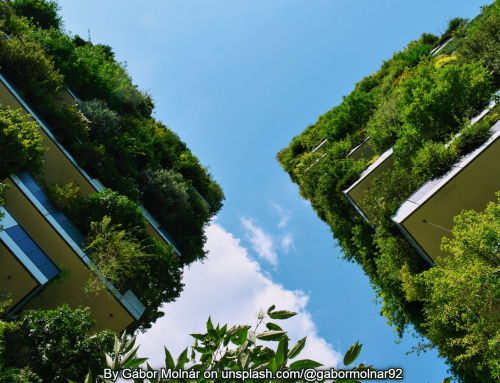 Sustainability Starts With Design